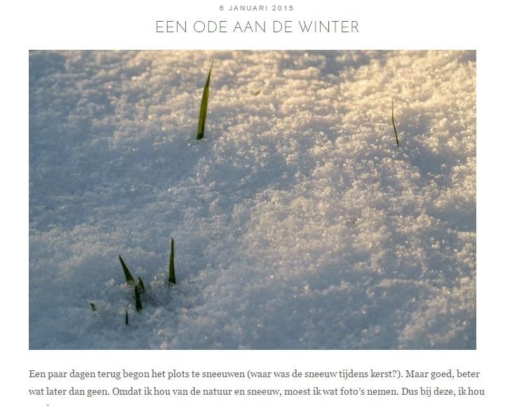 Een ode aan de winter